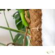 Kókuszrostkaró 120 cm