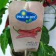 Paprika pick-&-joy(r) mild chili