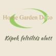 Philodendron Scandens Micans támasztékra futtatva