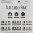 Bulb Garden pink