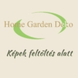 Xanthosoma Lime Zinger